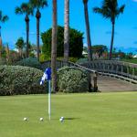 Golf Balls Practice Green-300