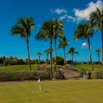 Golf Balls Practice Green-304