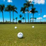 Golf Balls Practice Green-311